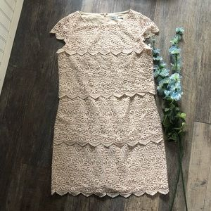 Eliza J | Cream Lace Sheath Dress